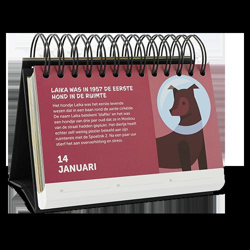 kalender honden weetjes